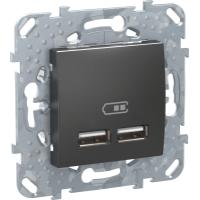 2 USB зарядное устройство 2.1А, граф