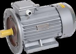 Электродвигатель 3ф.АИР 100L2 380В 5,5кВт 3000об/мин 2081 DRIVE ИЭК